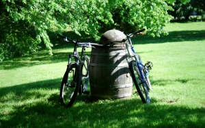 bicycles and garbage can